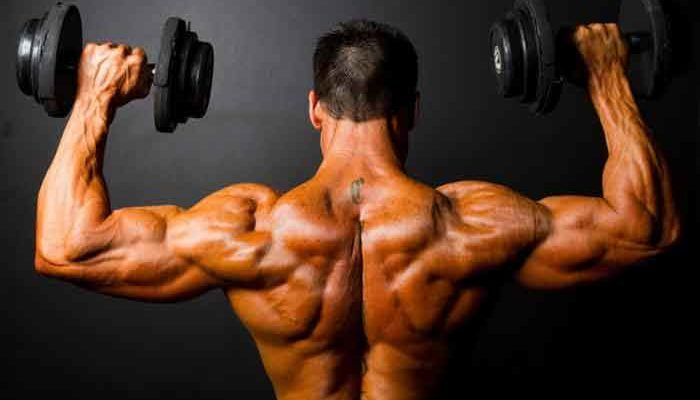 Kimera Muscle Review
