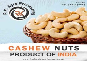 best cashew nut suppliers in India