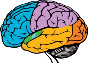 Modalert Mind Booster